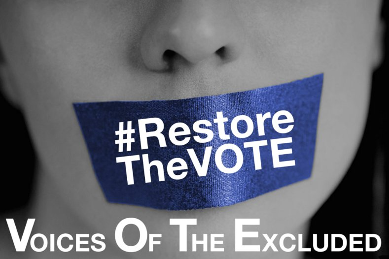 The right to vote is the right to a voic...