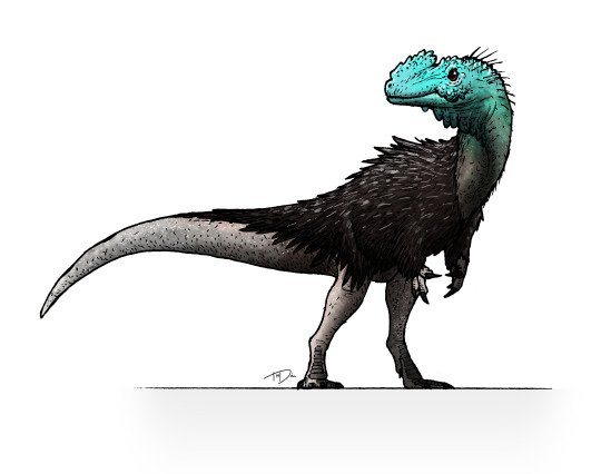 Tonouchisaurus is a possible tyrannosaurid #dinosaur from Cretaceous #Mongolia that was about 3 feet long. #sciart  Tumblr: I draws dinos <br>http://pic.twitter.com/rrArOrbkKd