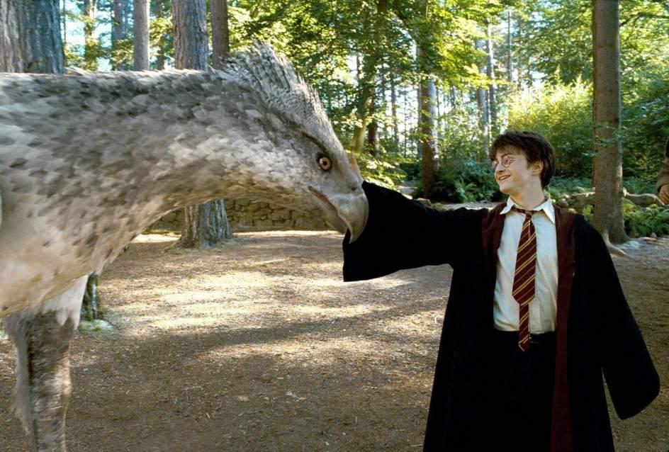 J. K. Rowling revela que existen dos Harry Potter https://t.co/yVvXxPdVKj
