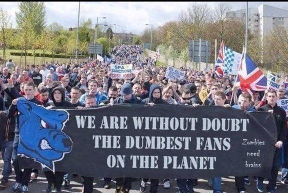 Image result for without doubt the dumbest fans on the planet