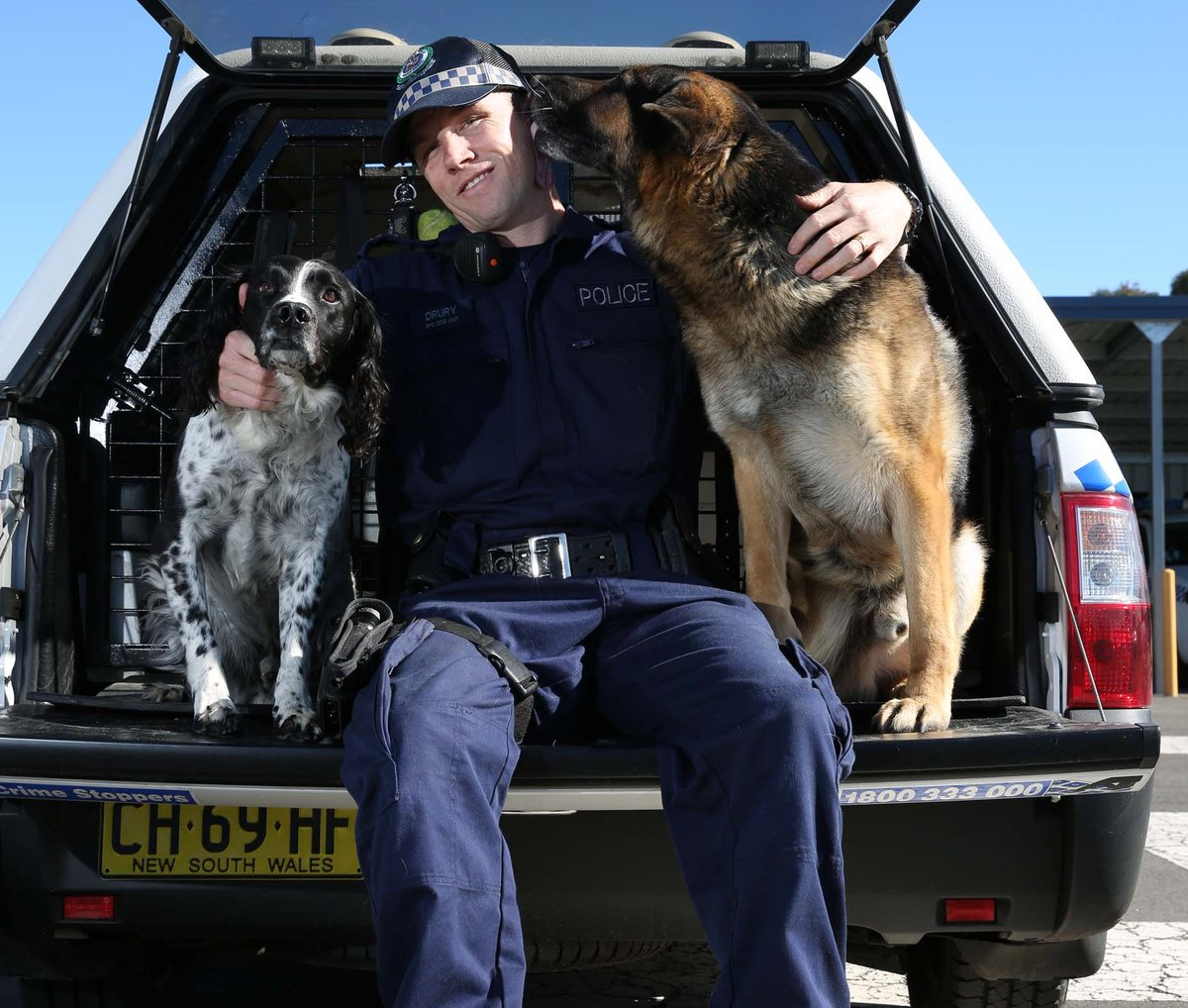 Everyday is #TakeYourDogToWorkDay at the Police Dog Unit. https://t.co...