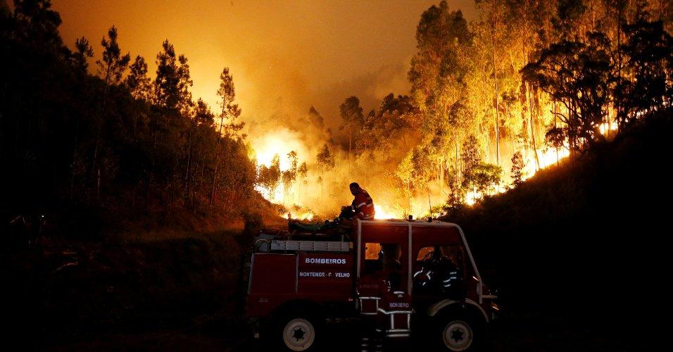 Incêndio em Portugal teve 'mão criminosa', diz bombeiro https://t.co/3Eh8yJBcoc