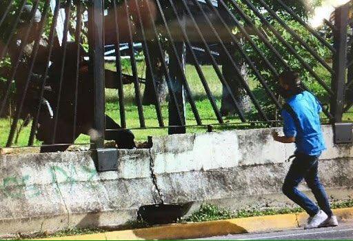 Que es esto vale ? Esto es Venezuela ? Señor haga algo antes de que sea tarde https://t.co/rbUllw6Deo