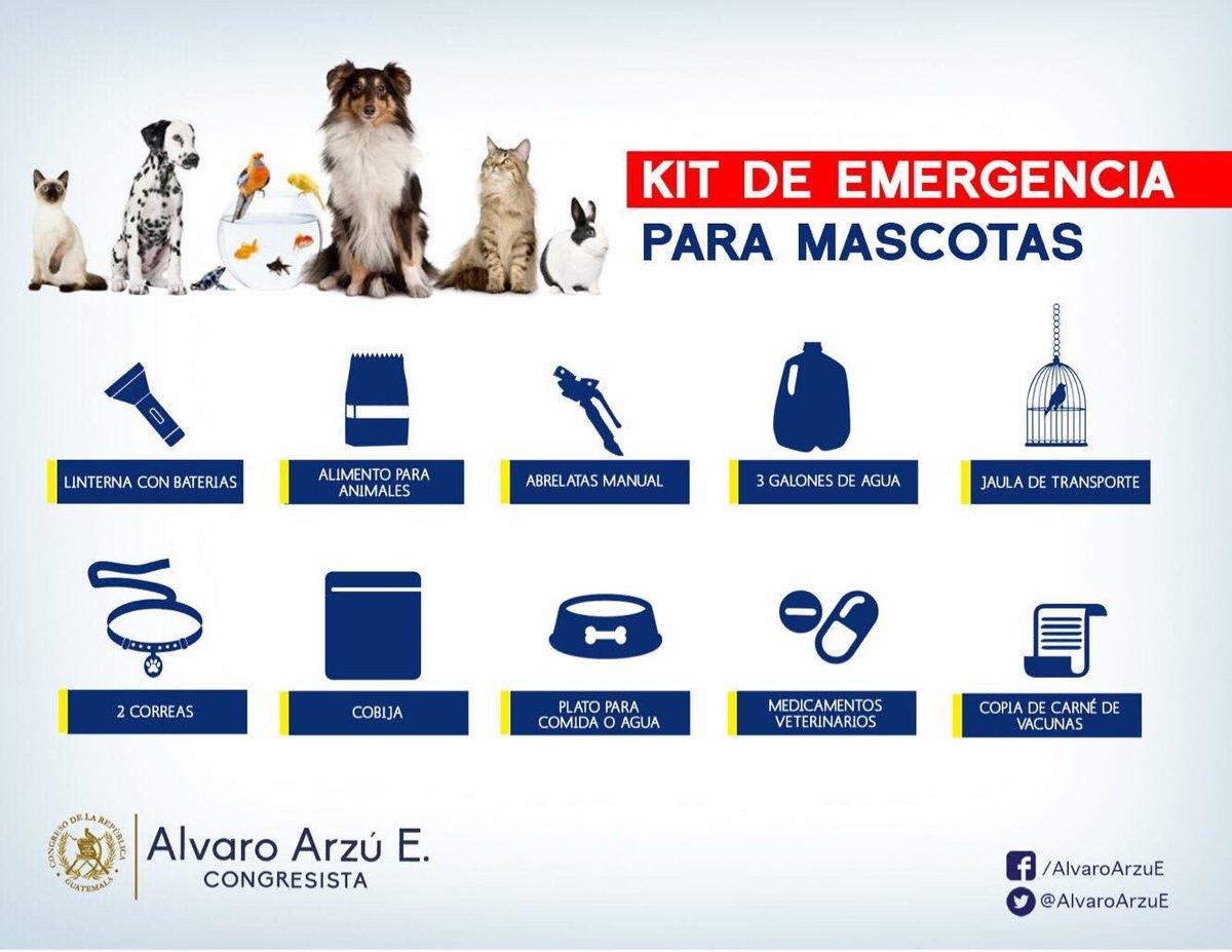 No dejemos fuera a ningún miembro de la familia en nuestro plan de emergencia. #TemblorGt