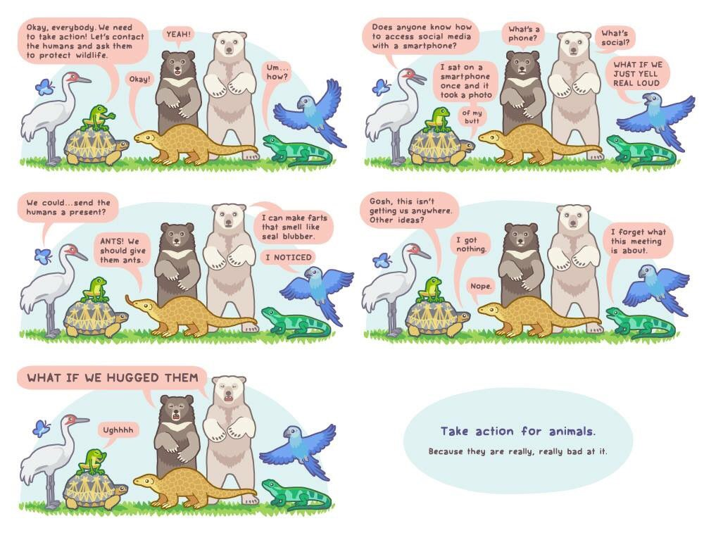 Let&#39;s not get lost in translation, let&#39;s protect wildlife! #conservation #SciComm #biology #SciComm via Bird and Moon Comics<br>http://pic.twitter.com/ZLFXlgiYjy
