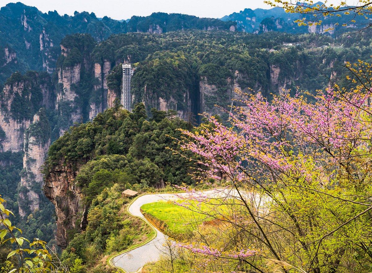 Image result for zhangjiejie