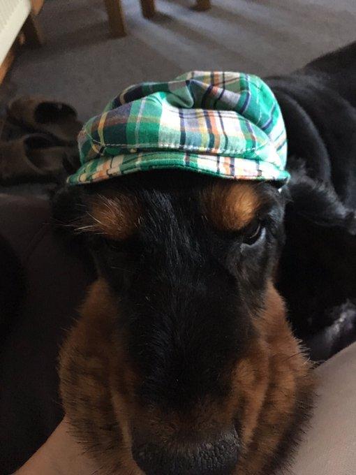 wish Jackie Stewart a happy birthday Luis is wearing his hat!!!