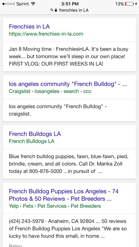 Adelaine M Rin On Twitter It S So Hard To Find Frenchies In La
