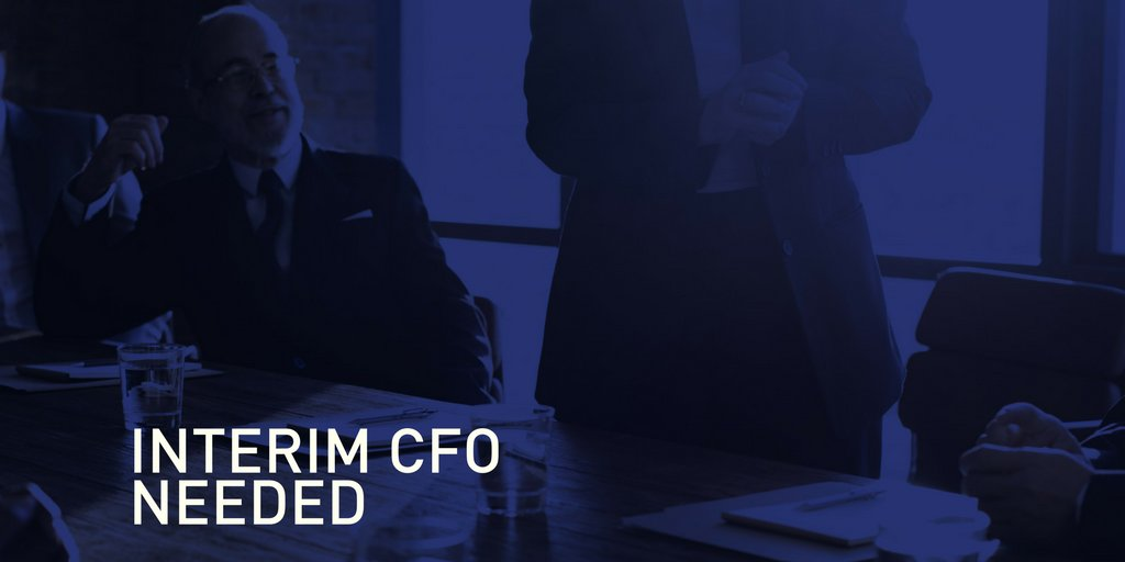 Image result for interim cfo