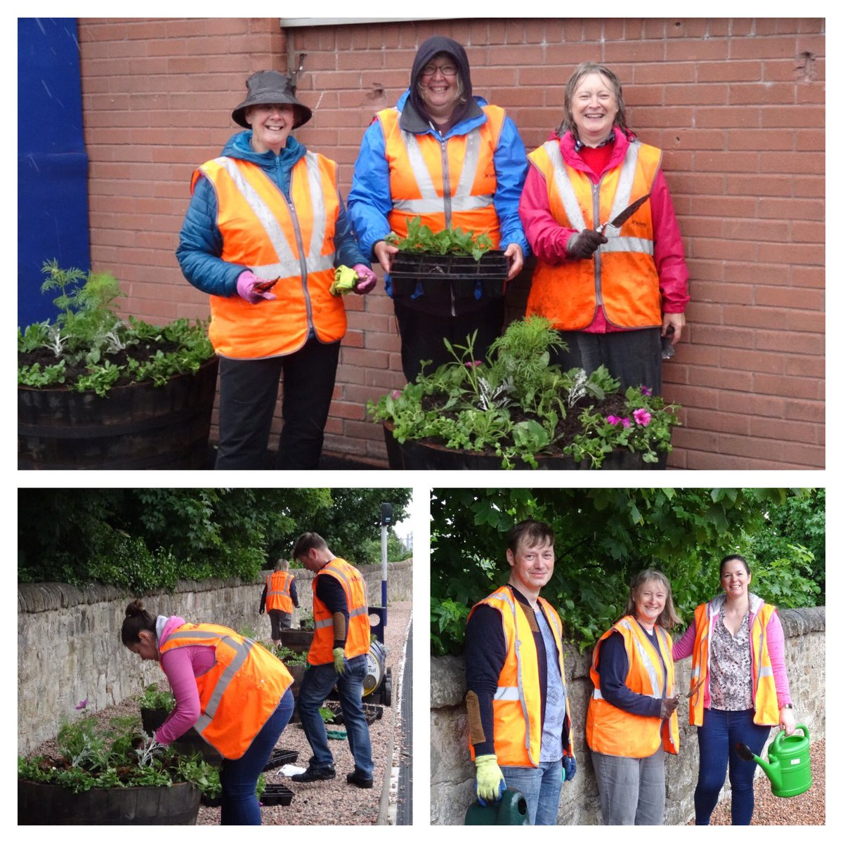 #scotrail #stationadopters busy #planting over 1000 summer plants in rain! #linlithgow station #burghbeautiful @LinlithgowVisit #volunteers<br>http://pic.twitter.com/WwnMj77aRJ