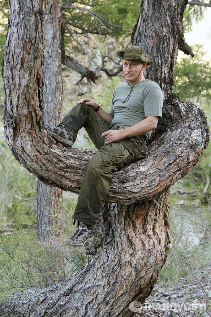 6) премьер-министр россии владимир путин сидит на дереве во время рыбалки.