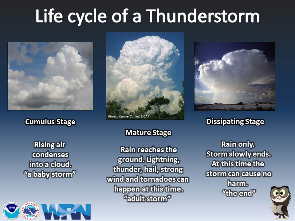 single cell t storms are typically driven by afternoon heating produce brief periods of heavy rain lightning