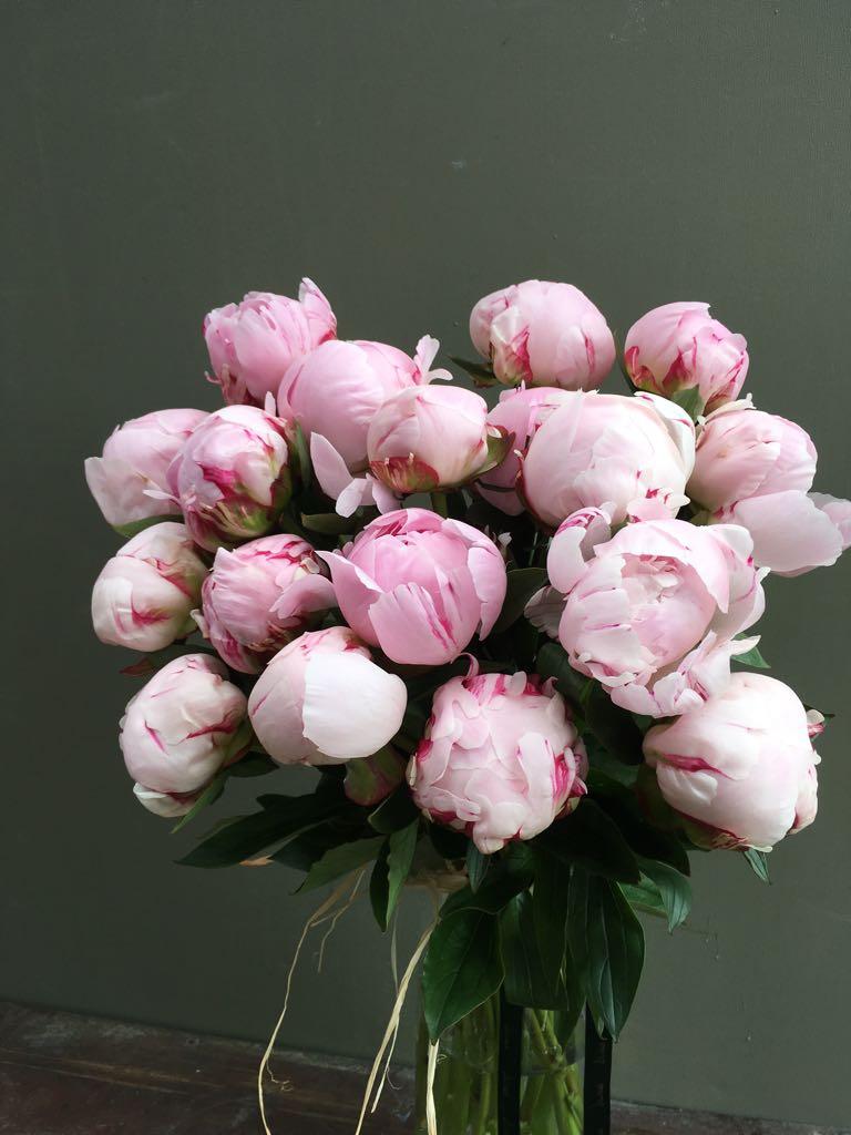 Daisies flower shop daisiesoxford twitter 0 replies 1 retweet 1 like izmirmasajfo