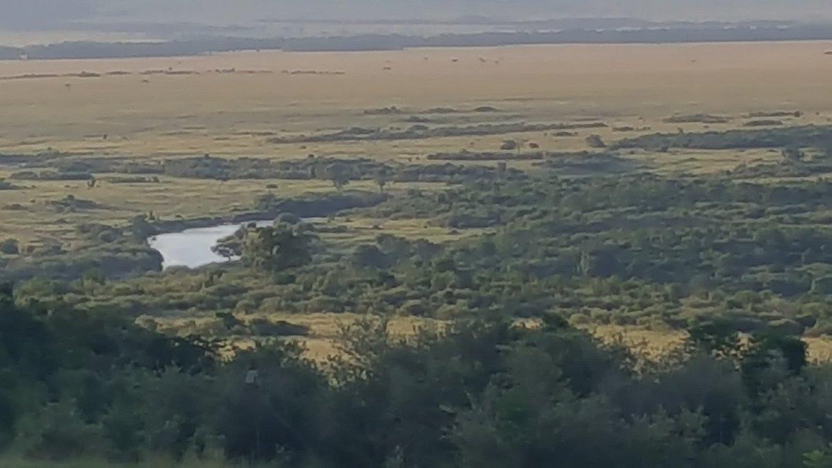 Marklunds masai mara