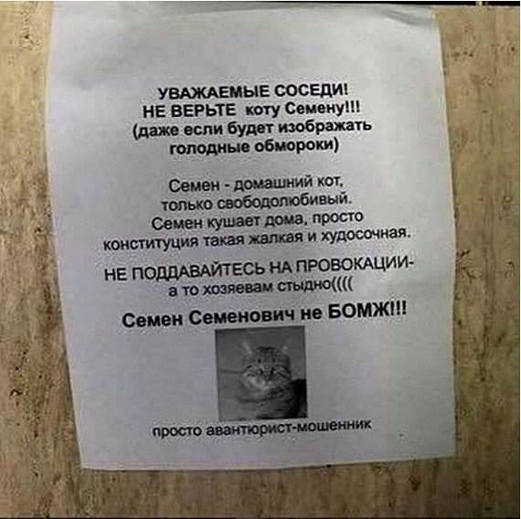 Есть шанс проголосовать пенсионную реформу уже на следующей пленарной неделе Рады, - Кононенко - Цензор.НЕТ 8740