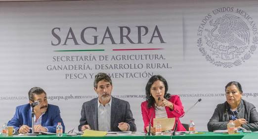 Sagarpa respalda a sector pecuario de Colima https://t.co/fiqIcJjiV3 https://t.co/xioOVQ62PS