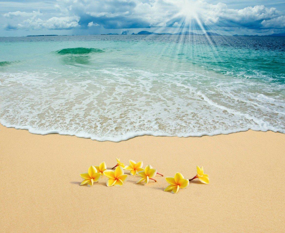 Ваша открытка море, счастливого полета