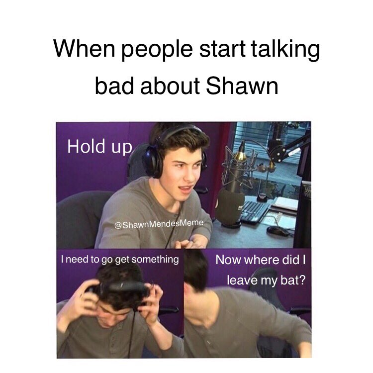 shawn mendes memes shawnmendesmeme twitter