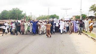 Armed herdsmen, cattle dealers storm Taraba Assembly, protest anti-grazing bill