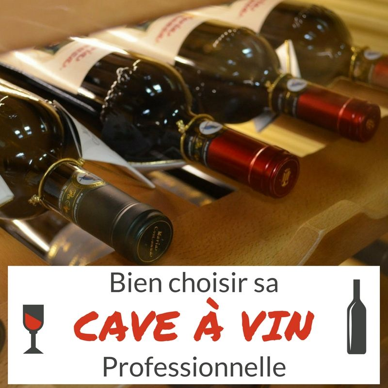 Caveavin on - Comment choisir sa cave a vin ...