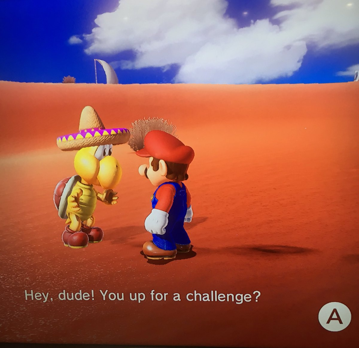 I have waited my whole life for a turtle in a sombrero to ask me this question