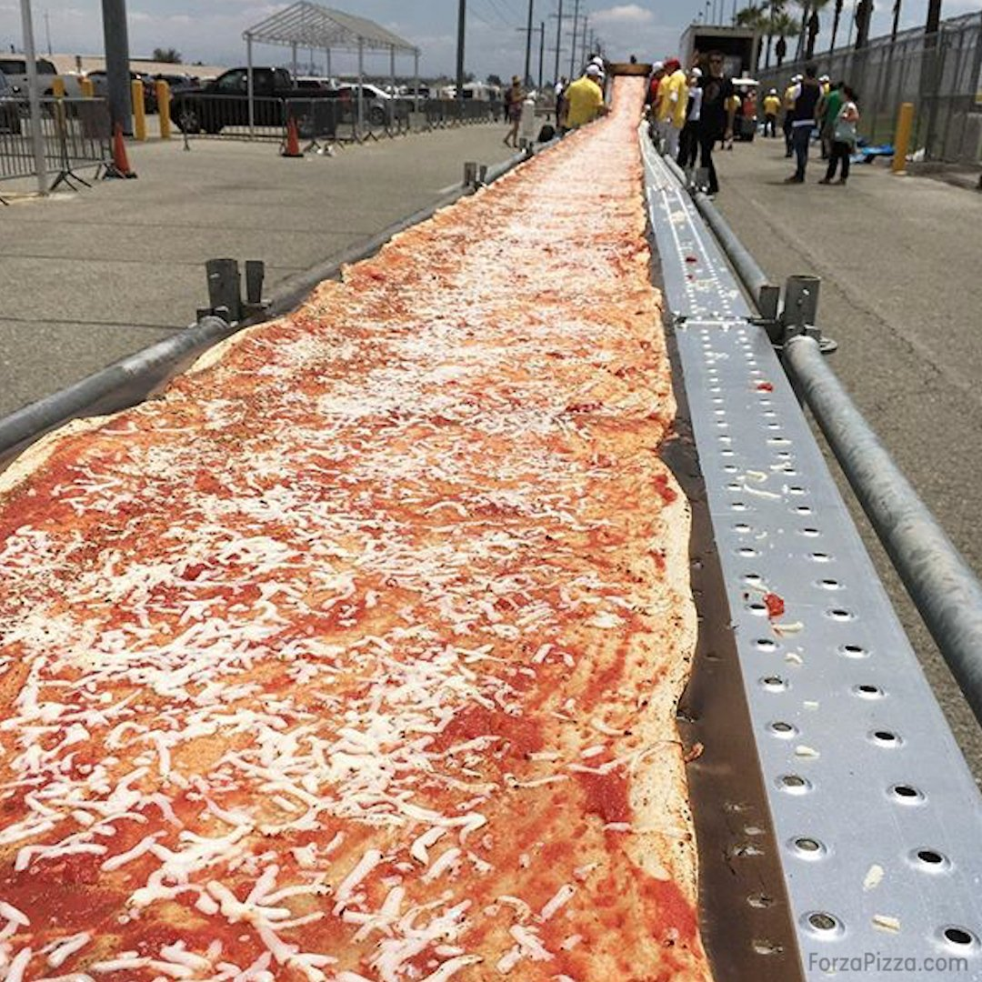 Image result for longest pizza
