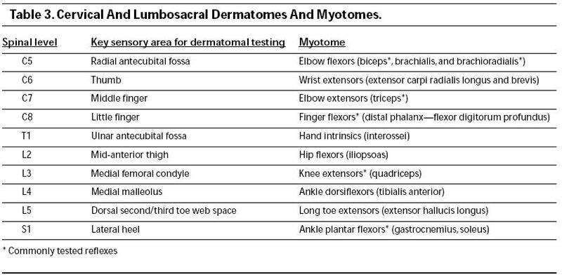 """ATC BOC Study Guide on Twitter: """"Major dermatome and ... Upper Extremity Myotomes"""