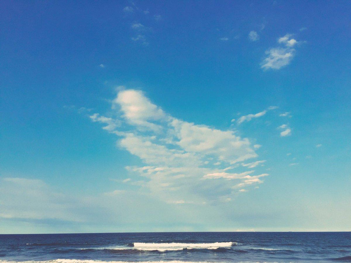 おはよー! 先日、ライブパンフの撮影いってきたよー!海 いい天気だったー!!