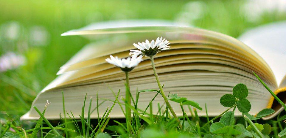 Лучшие книги по философии - 559b