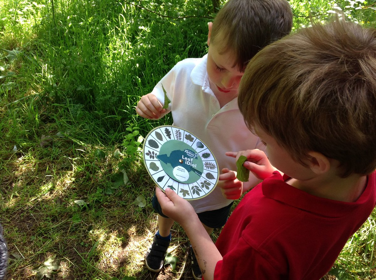 Year 1 exploring the different trees in our #forestschools area. We played Forest Scotch Eggs making cases for eggs <br>http://pic.twitter.com/0uUYTJ3VQB