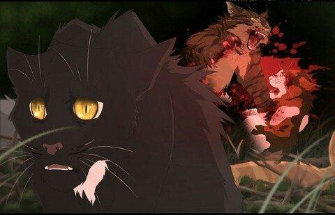 Коты воители огнезвезд фото - e2fd8