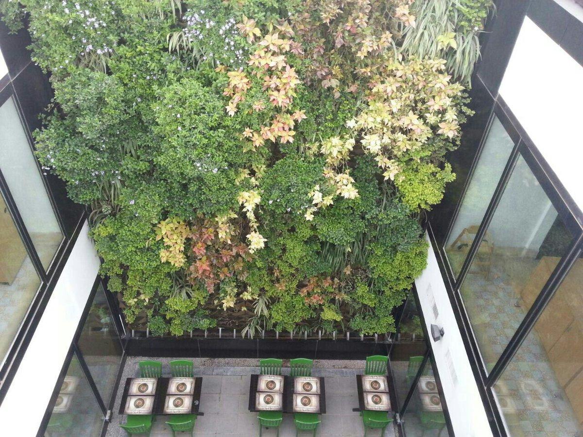 jcgardendesign: Garden Design Kuwait