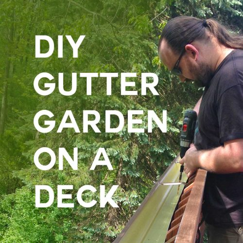 DIY Gutter Garden For a Deck Railing