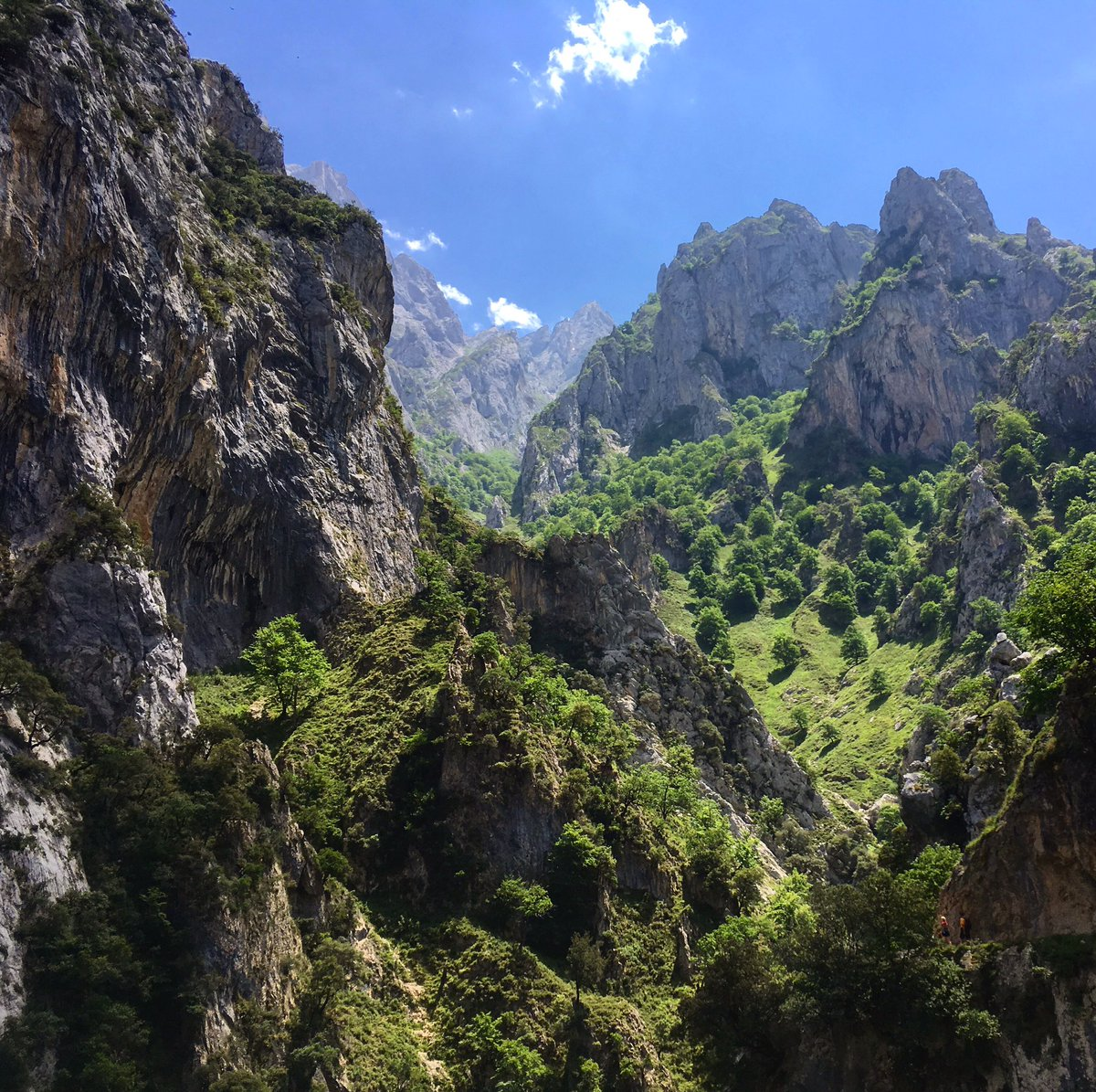 For a reminder of nature&#39;s grandeur hike the epic Cares Gorge #picosdeeuropa @Pura_Aventura<br>http://pic.twitter.com/MPruM5rbbU