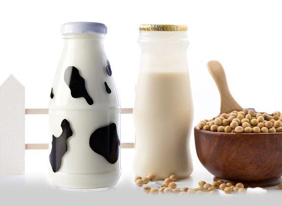 UE: per Soia e prodotti puramente vegetali non si usi la parola latte. Il formaggio vegetale non esiste