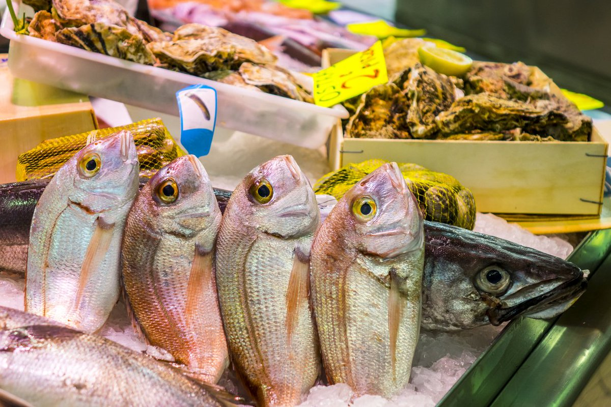 Methionine—an important #aminoacid—can be found in #eggs, #halibut, #chicken, #turkey, #tuna, and #freshwaterfish<br>http://pic.twitter.com/Flt7iUHddE