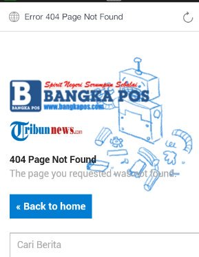 404 page not found page - 49