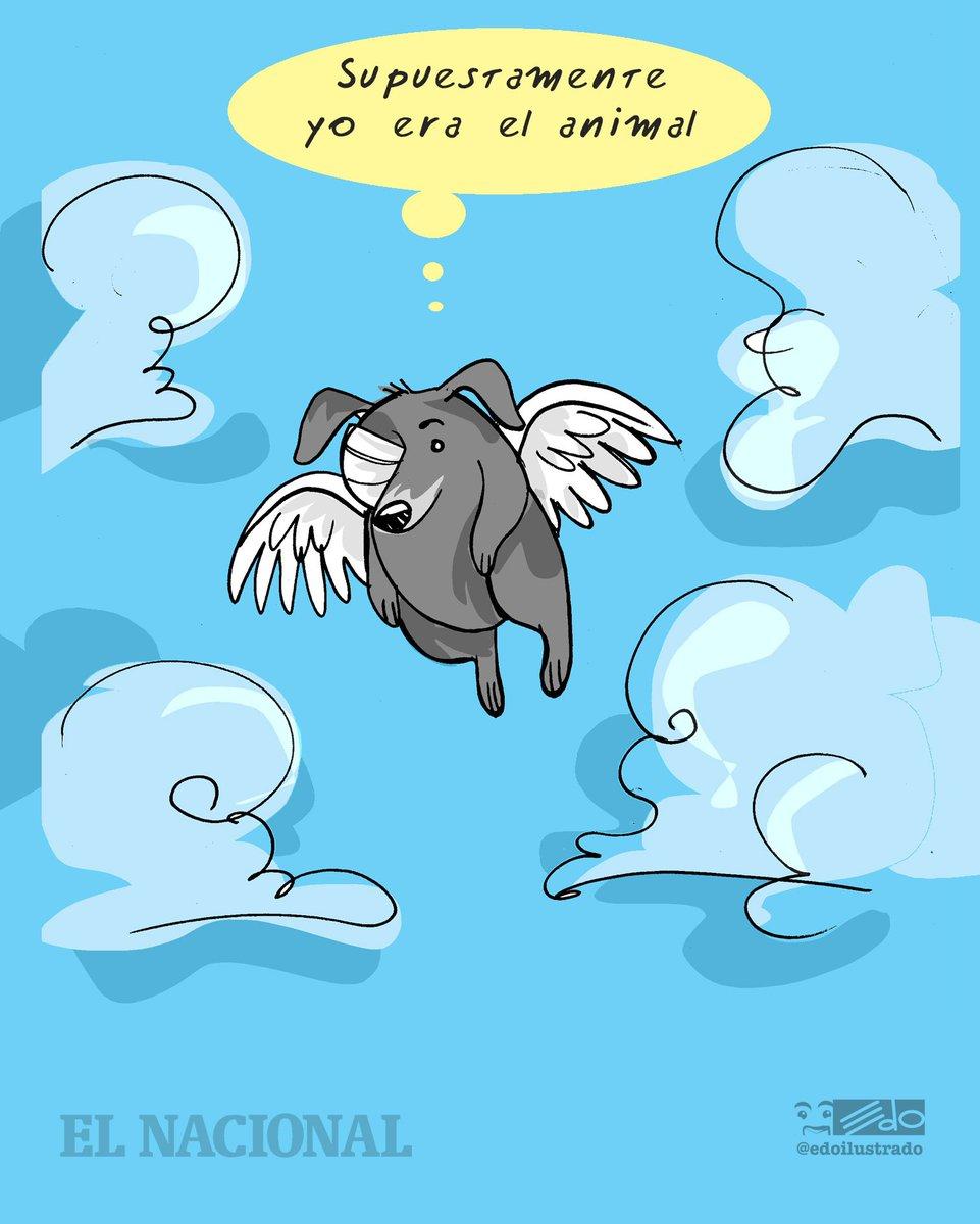 Caricatura EDO para @ElNacionalWeb : Cross