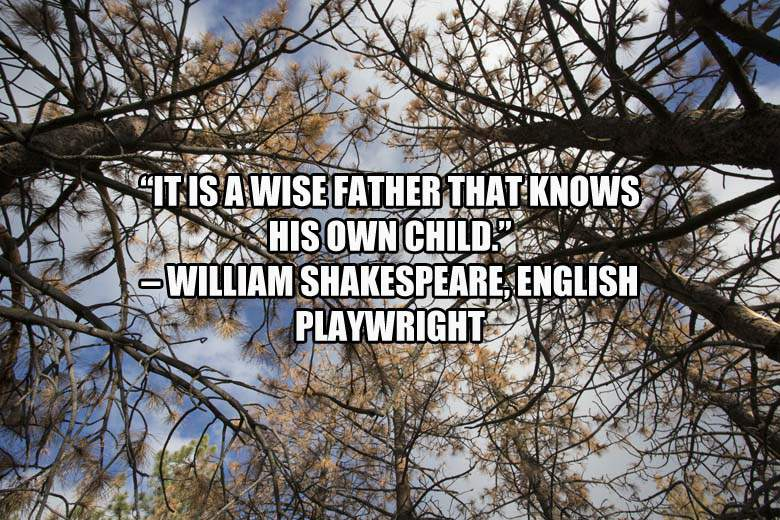 It is a wise father that know his own child #ShakespeareSunday #happyfathersday #wildforesters #forestschool #outdoorfun<br>http://pic.twitter.com/asH06IyII0