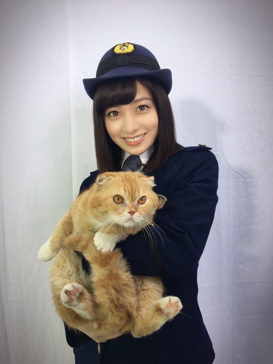 猫を抱っこしている橋本環奈
