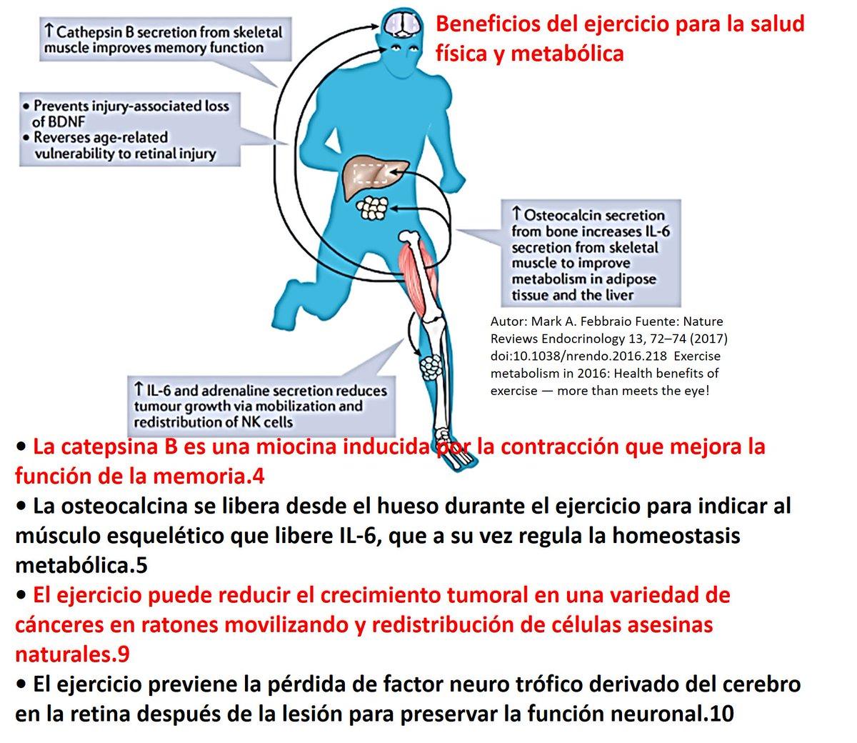La actividad física mejora el crecimiento de la disfunción eréctil del cuerpo.