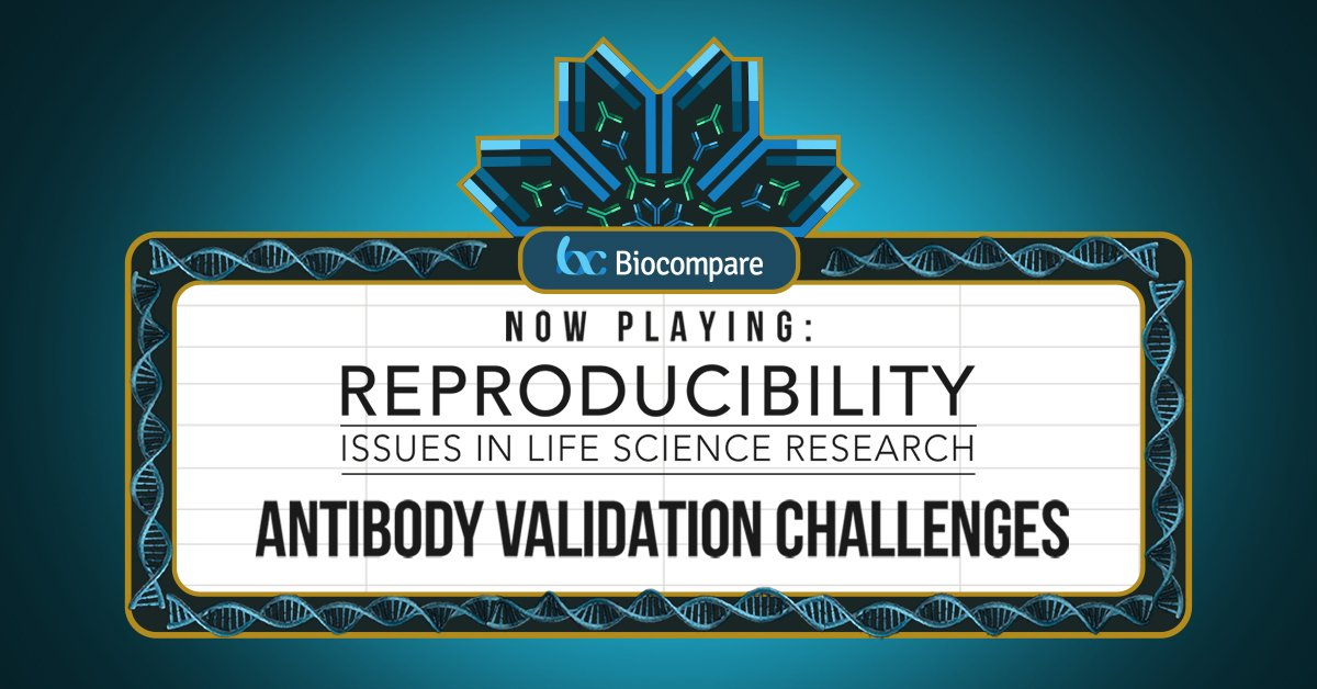 Documentary Now Live! Check out #Reproducibility Issues in #LifeScience: #Antibody Validation Challenges  http://www. biocompare.com/reproducibilit y/ &nbsp; … <br>http://pic.twitter.com/gdEisH6LRp