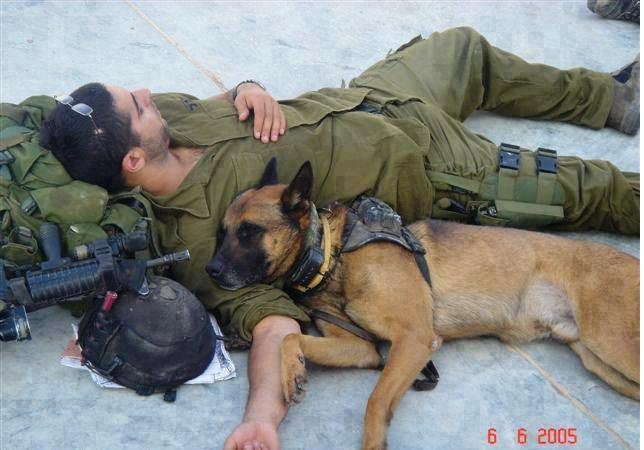 Wishing my Jewish and Israeli followers #ShabbatShalom, and everyone a great weekend!  #BringYourDogToWorkDay https://t.co/jM5vKaQ7JZ