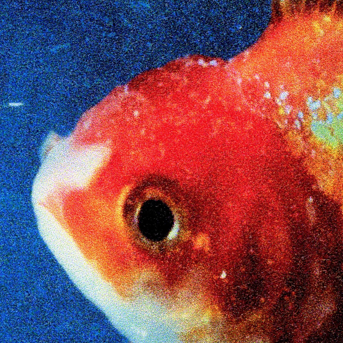 Big Fish Theory by @vincestaples is out now ✊ https://t.co/yjBEpknQ42...