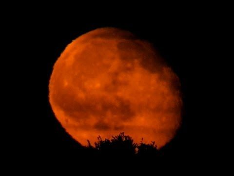 Moonrise (Original #video) — @Steemit #video #astronomy #moon  http:// buff.ly/2sUe7Op  &nbsp;  <br>http://pic.twitter.com/cYsgrnOnII