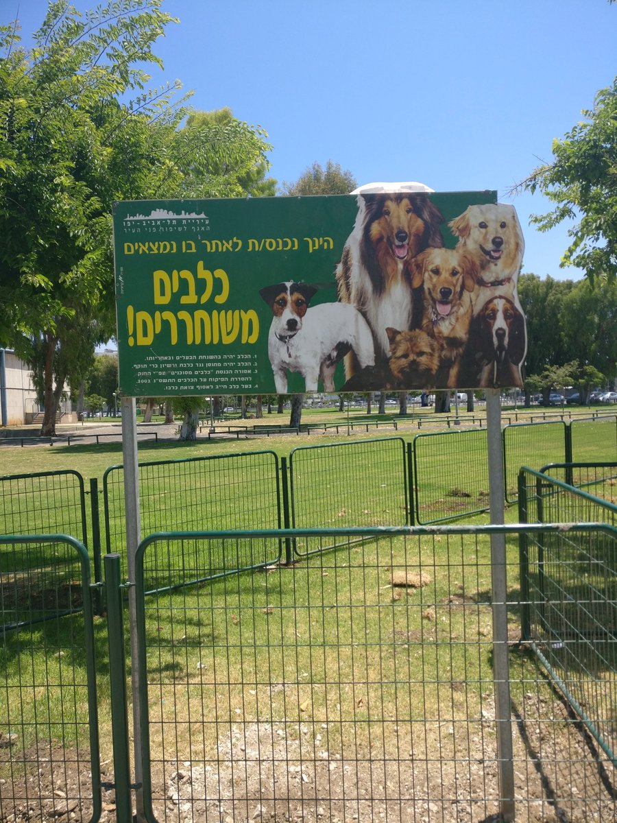 למה בשלט בכניסה לגינה יש תמונות של כלבים אשכנזים בלבד??? https://t.co/FQ5Mz5ativ