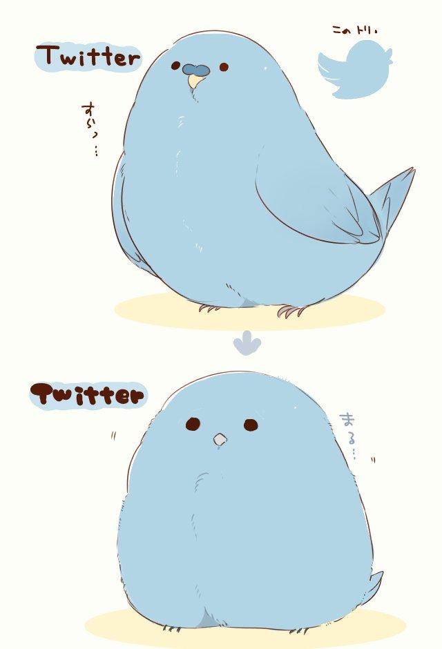 アップデート前後のツイッターのイメージ(鳥さんver.) スラッとした子がふっくら丸い子に…!