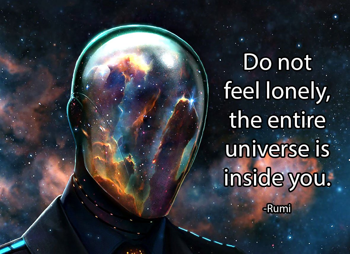 Do not feel lonely, the entire universe is inside you. -Rumi