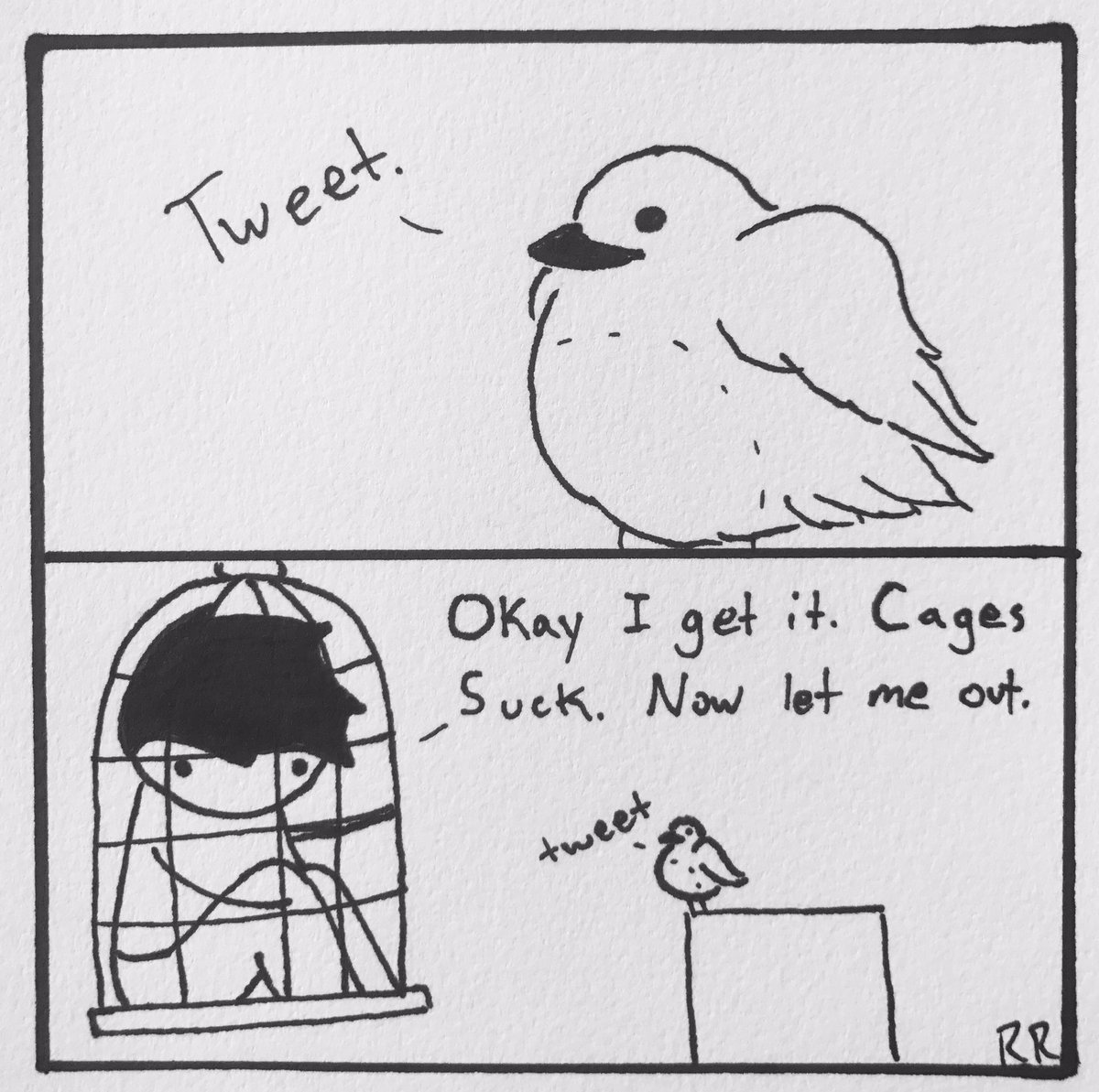 I love fluffy birds. #bird #birb #cage #comic #cute #webcomic #animal #floof #tweet #comics #webcomics #art #FridayMotivation<br>http://pic.twitter.com/GCcse4QFP1