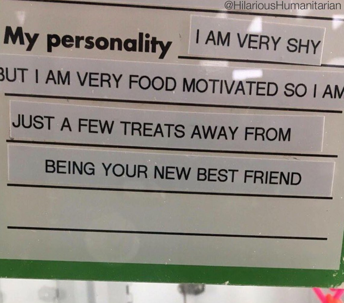 describe yourself your personality